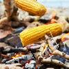 Набор вилок для барбекю Light My Fire Grandpa's FireFork 4-pack Outdoor - изображение 8